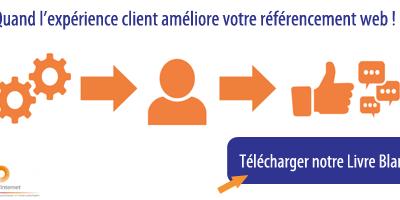 Le référencement par l'expérience client – Livre Blanc Brioude Internet